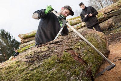 Préparation de la grume - Cubage et identification des billons