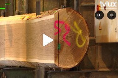 120 ans de la Scierie de Landin - Reportage TV Lux